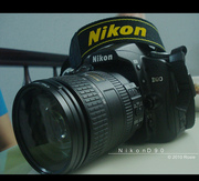 Nikon D90 12.3 MP Digital SLR Camera