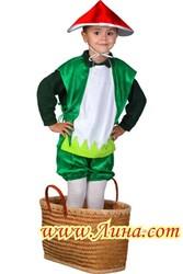 Костюм грибочка напрокат- www.Лина.com - 063-104-90-20 - Винница