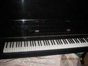 продам срочно пианино