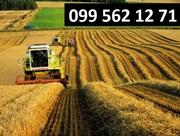 услуги по уборке сои кукурузы зерновых рапса буряка Запорожье